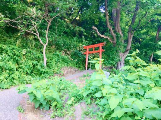 【小樽】勤労奉仕ボランティア募集(9月)